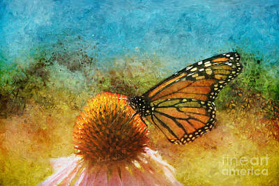 Artistic Monarch Art Print