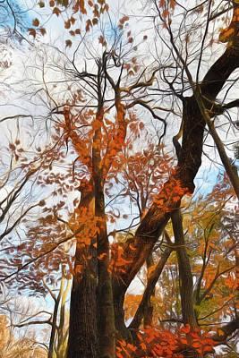 Artistic Old Maple Original