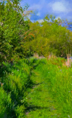 Pathway Digital Art - Artistic Painterly Pathway May by Leif Sohlman