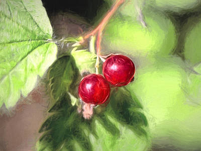 Photograph - Artistic Panterly Two Wild Goosberries by Leif Sohlman