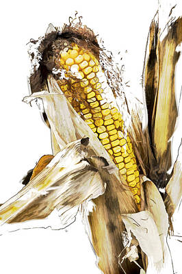 Photograph - Artistic Rendition Of Harvest Ear Of Corn by Randall Nyhof
