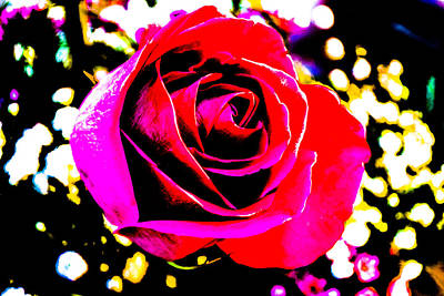 Photograph - Artistic Rose - 9161 by G L Sarti