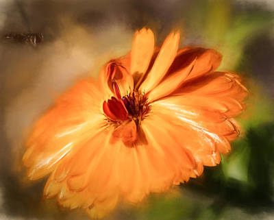 Photograph - Artistic Tones In Orange by Leif Sohlman