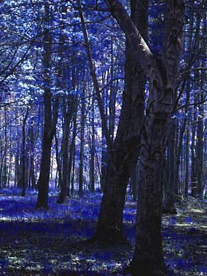 Artistic Tree In Blue Original