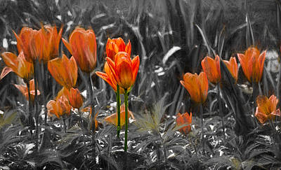 Photograph - Artistic Tulips Orange by Leif Sohlman