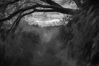 Pathway Digital Art - artistic Vault Portal by Leif Sohlman