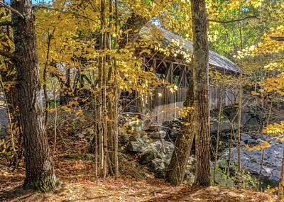 Photograph - Artist's Bridge by Jane Luxton