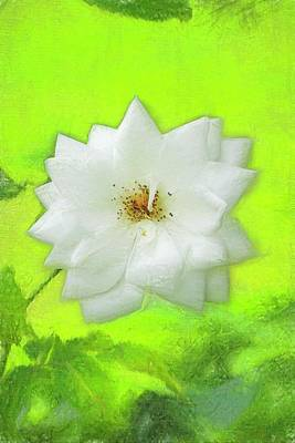 Digital Art - Artized Photo Of A Single White Blossom. by Rusty R Smith