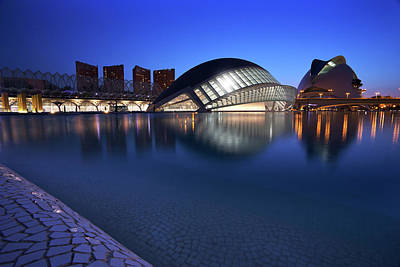 Photograph - Arts And Science Museum Valencia by Graham Hawcroft pixsellpix
