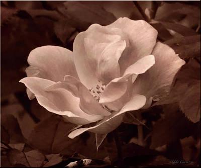Digital Art - Artsy Flower by Mikki Cucuzzo