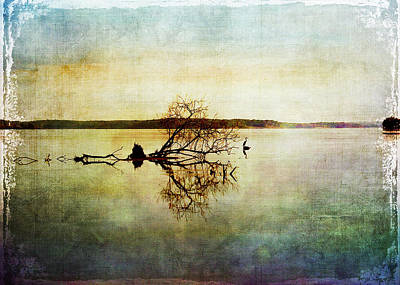 Artsy Lake Reflections Art Print