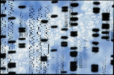 Artwork Of Dna Sequences And A Dna Molecule Art Print by Pasieka
