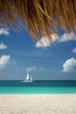 Photograph - Aruba Sailboat by Brian Jannsen