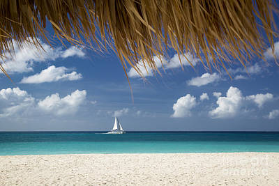 Photograph - Aruba Sailing by Brian Jannsen