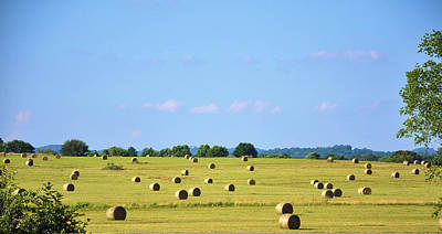 Tennessee Hay Bales Photograph - As Far As You Can See by Jan Amiss Photography