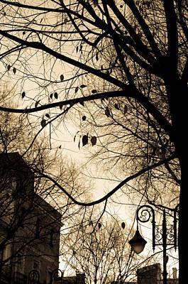Sunrise Photograph - As Shadows Fall - Sepia Tones by Andrea Mazzocchetti