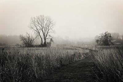 Photograph - As The Fog Rolls In by Shawna Rowe
