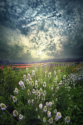 Photograph - As The Seasons Roll By by Phil Koch