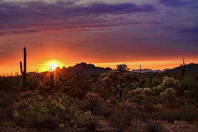 Photograph - As The Sun Sets On The Sonoran  by Saija Lehtonen