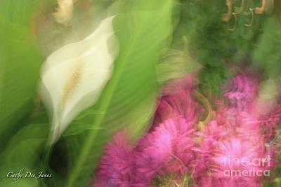 Photograph - Ascend To Peace by Cathy Dee Janes