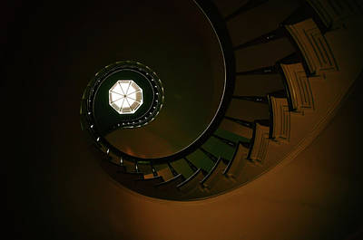 Photograph - Ascending To Light by Andrea Platt