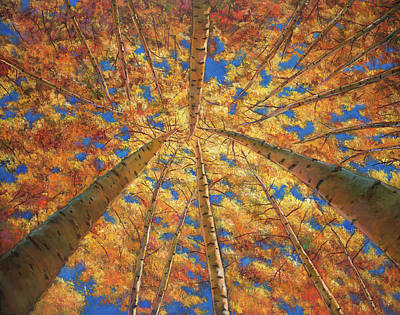 Aspen Trees Painting - Ascension by Johnathan Harris