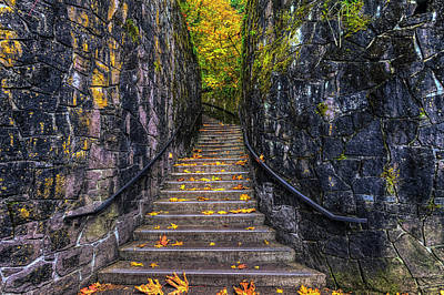 Photograph - Ascent To Autumn by Mark Kiver