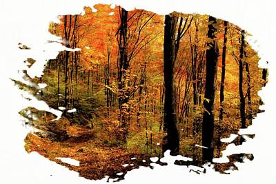 Antique Maps - Ascutney Mountain Autumn Trail by Sherman Perry