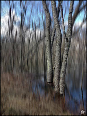 Photograph - Ash In A Flooded Plain by Wayne King