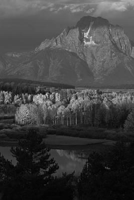 Photograph - Ashen Trees And Moran by David Andersen