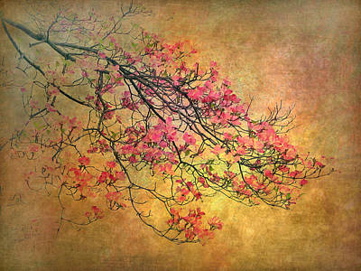 Golden Digital Art - Asian Dogwood by Jessica Jenney