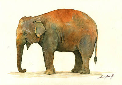Asian Elephant Art Print by Juan Bosco
