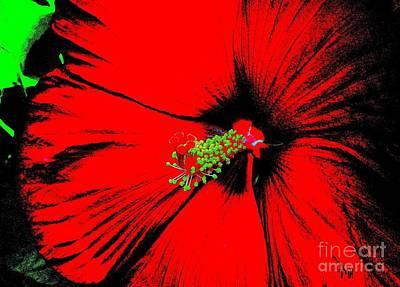 Etc Digital Art - Asian Red Macro Hibiscuss by Marsha Heiken