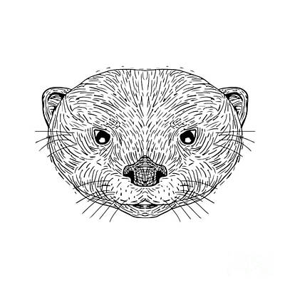 Asian Small-clawed Otter Head Drawing Art Print
