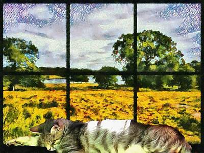 Photograph - Asleep On The Window Ledge By The Lake by Dorothy Berry-Lound