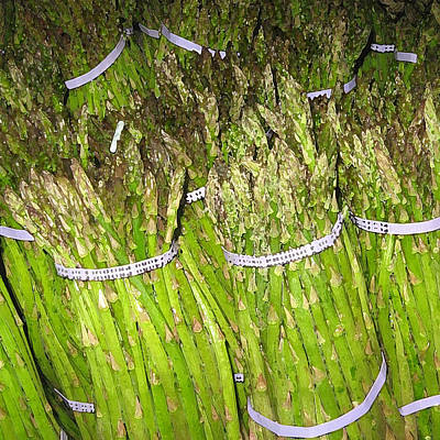 Asparagus Digital Art - Asparagus by John Vincent Palozzi