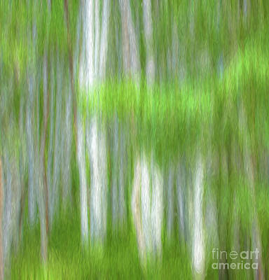 Water Droplets Sharon Johnstone - Aspen Abstract by George Robinson
