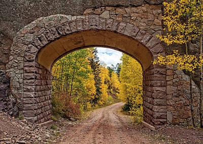 Photograph - Aspen Arch by Charles Warren