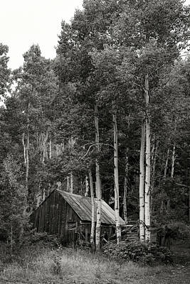 Photograph - Aspen Cabin  by Bud Simpson