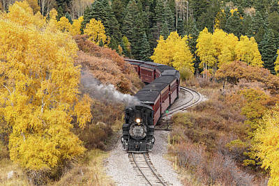 Photograph - Aspen Curves On The Rails by Steven Bateson