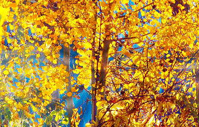 Photograph - Aspen Glow Autumn Sky II by Anastasia Savage Ealy
