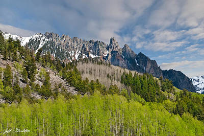 Photograph - Aspen Grove Below The Ophir Needles by Jeff Goulden