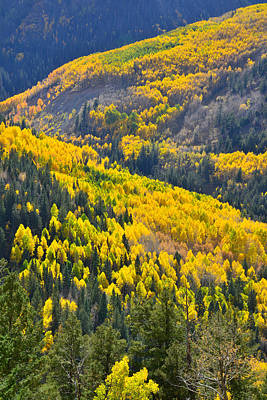 Photograph - Aspen Highlands by Ray Mathis