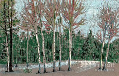 Drawing - Aspen In The Snow by Donald Maier