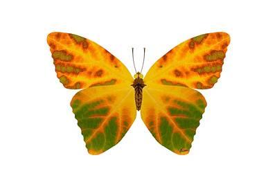 Digital Art - Aspen Leaf Butterfly 1 by Agustin Goba