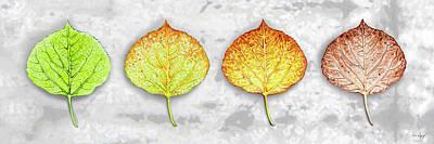 Aspen Leaf Progression - Bark Texture Bachground Art Print