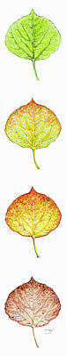 Painting - Aspen Leaf Progression - Vertical Format by Aaron Spong