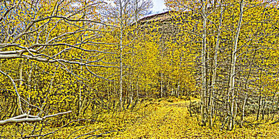 Photograph - Aspen Leaf Road by L J Oakes