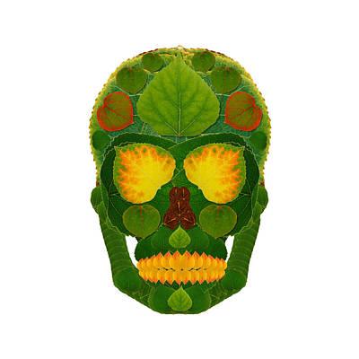 Digital Art - Aspen Leaf Skull 9 by Agustin Goba