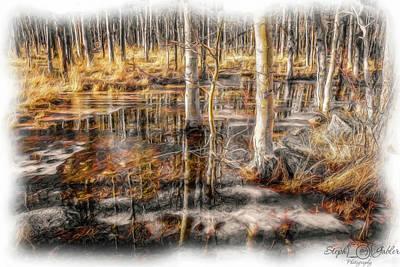 Photograph - Aspen Meadow II by Steph Gabler